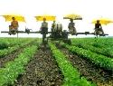 Einsparung durch zielgerichtete Herbizidapplikation