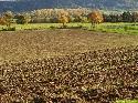 Entwicklung der Bodenpreise in Deutschland