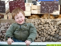 Heute (23.02.2008) auf dem Wochenmarkt in Neu-Ulm