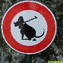 Mit Hightech gegen Hundehaufen
