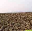 Niedersachsen jetzt Agrarland Nummer eins