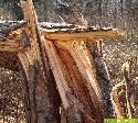 Sturmholzanfall durch Emma regional unterschiedlich