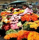 Stuttgarter Wochenmarkt