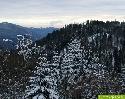 Winter zieht mit Schnee und Kälte im Hochschwarzwald ein