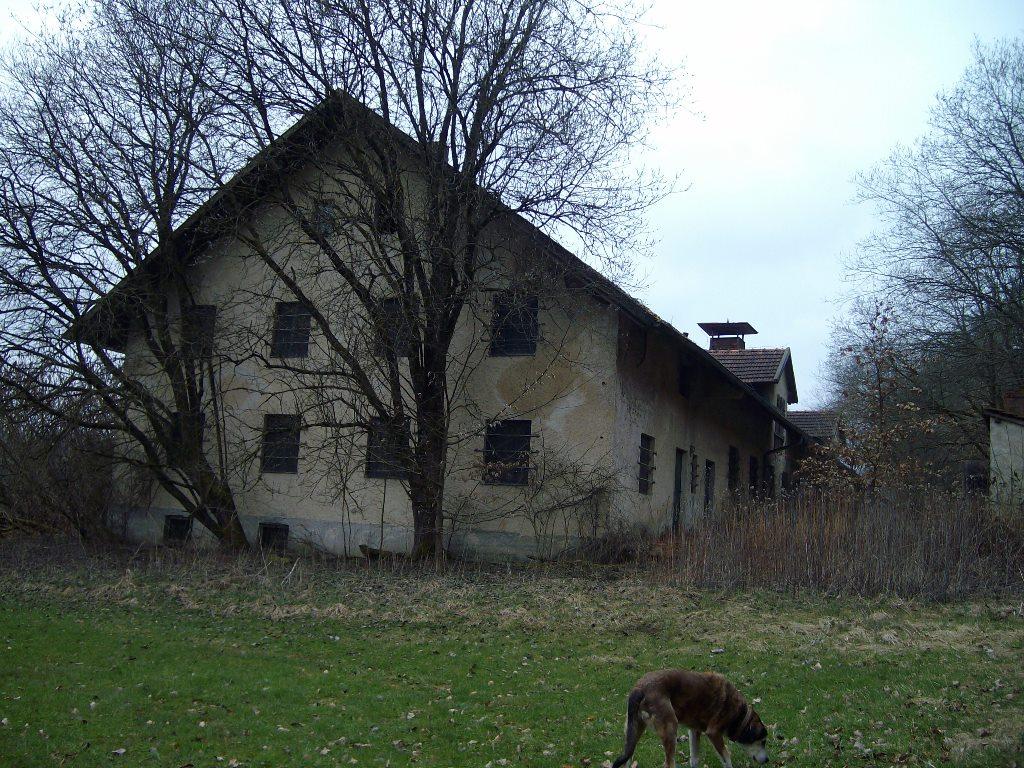 Fotos Verlassener Bauernhof Passau Passau Maps
