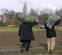 Weihnachtsbaum Selber Schlagen Dresden Thema Proplantade