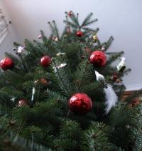 weihnachten weihnachtswetter festtage wettervorhersage. Black Bedroom Furniture Sets. Home Design Ideas