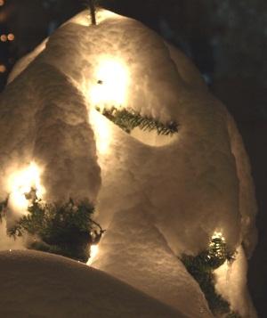 2019 Weiße Weihnachten.Weiße Weihnachten Gibt Es Wohl Wieder Nicht Proplanta De
