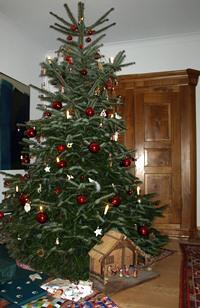 echt bio echt oder plastik wie nachhaltig ist der weihnachtsbaum. Black Bedroom Furniture Sets. Home Design Ideas