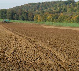 Landwirtschaft datiert Website