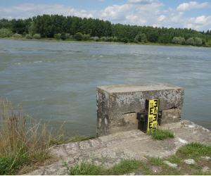 Rhein Wasserstand