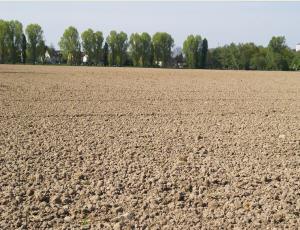 Landwirtschaftliche flächen kaufen
