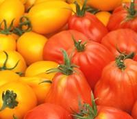alte tomatensorten einfach selber pfl cken. Black Bedroom Furniture Sets. Home Design Ideas