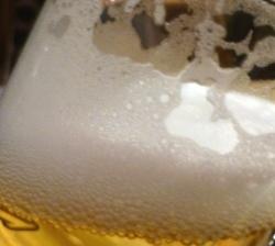 Greenwich Village Craft Beer