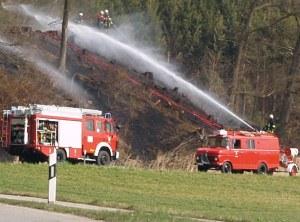 Waldbrandgefahr Rlp